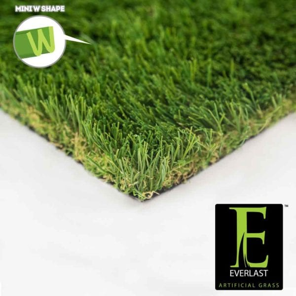 Imperial Fescue Mid