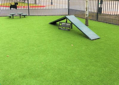 Artificial Turf Pet System